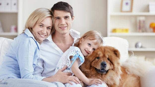 Wills & Trusts dog-young-family Direct Wills Ashby-de-la-Zouch